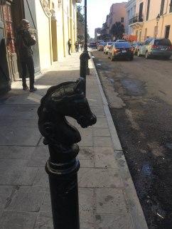 cute horse posts